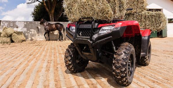 Honda TRX 420 FourTrax 2021
